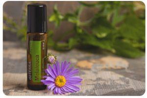 Produkt des Monats Juni: Melaleuca Touch