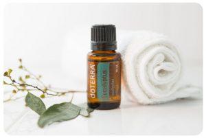 Produkt des Monats Juli - Eukalyptus