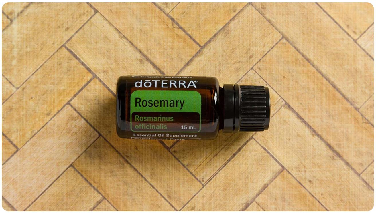 doterra Rosmary Oil (Rosmarin Öl)